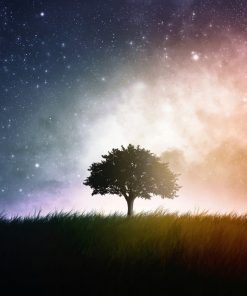 Single tree space background for astrology online course