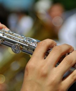 hands playing the flute in an online music course
