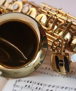 saxophone used for lessons on luma learn in an online course