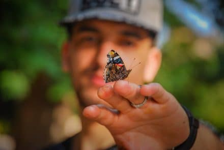 male high school student with butterfly in online course