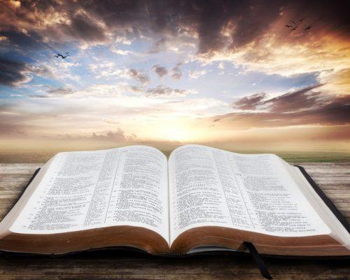 LL open-bible-luma-learn homeschool Christmas lessons